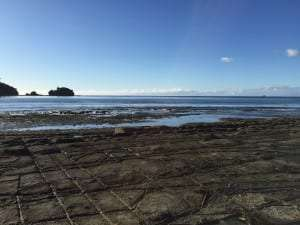 Breakfast at Tessellated Pavement