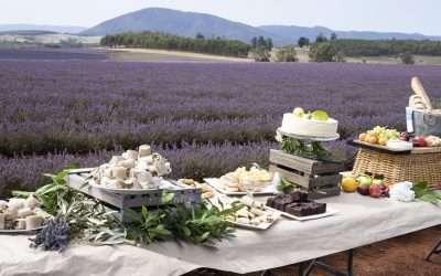 Northern Tasmania Instameet January 2020