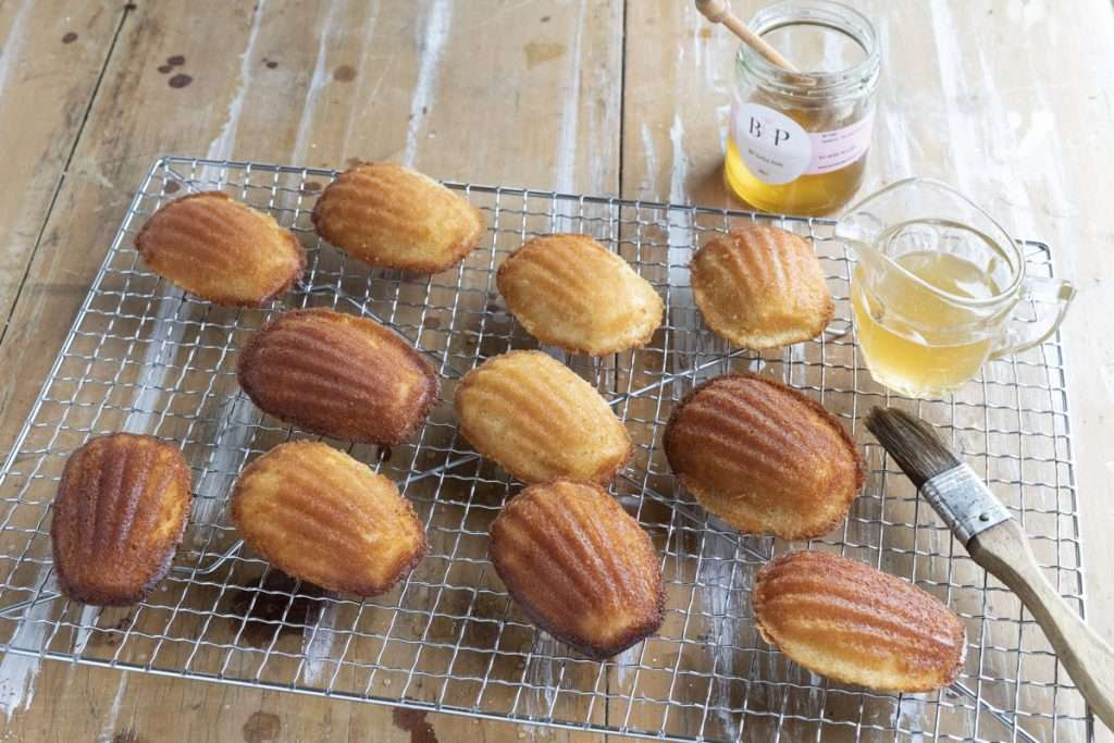 Arwen's Thermo Pics | Hobart Thermomix Consultant - Honey Madeleines