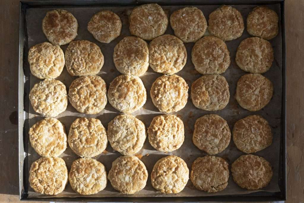 Arwen's Thermo Pics | Hobart Thermomix Consultant - Oat Biscuits