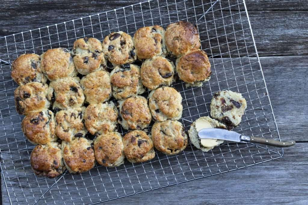 Arwen's Thermo Pics | Hobart Thermomix Consultant - Date, Orange & Chocolate Buttermilk Scones